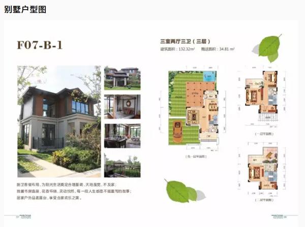 别墅户型图1.jpg